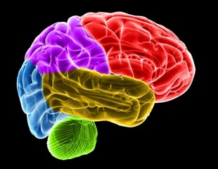 Cognitive decline in older adults not linked to sexual activity or emotional closeness