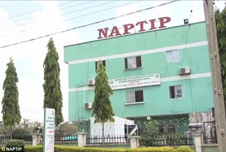 NAPTIP to establish sexual offenders' register, says D-G