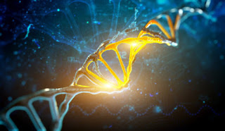 Poverty leaves a mark on our genes – study