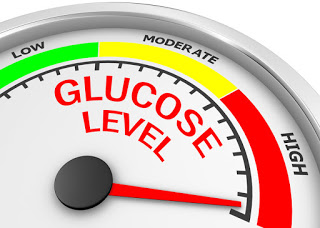 High glucose said to impair circadian clocks in obesity, may drive cardiovascular risk